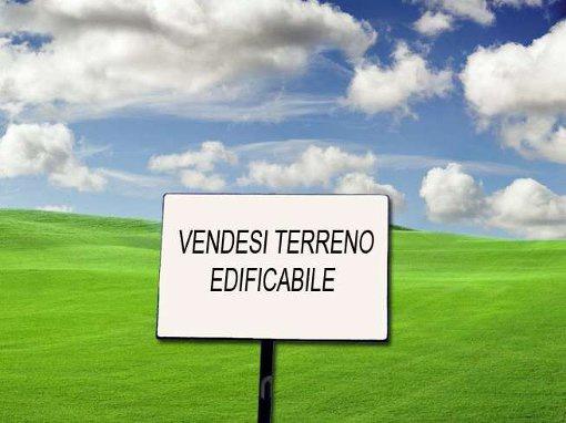 cerca Fonte  AREA EDIFICABILE VENDITA